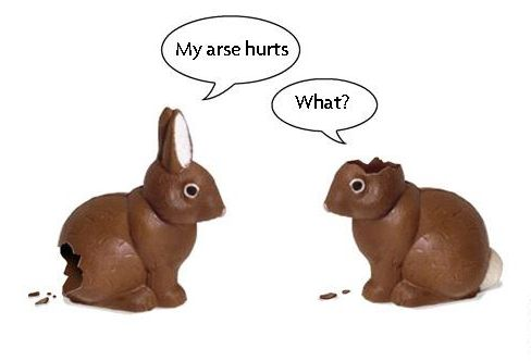 Easter rabbits.jpg